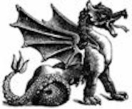 feng shui dragon pic (3)